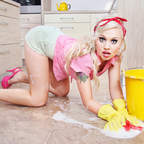 The Sissy Housewife