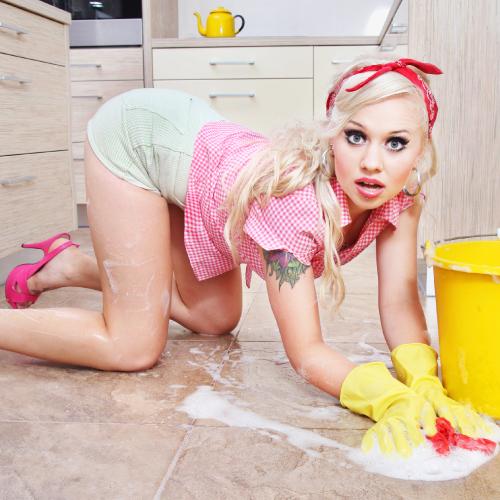 The Sissy Housewife
